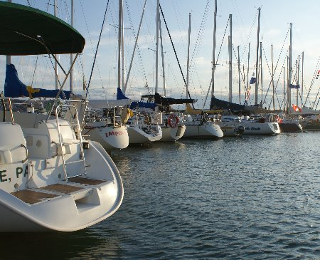Picture of the Marina
